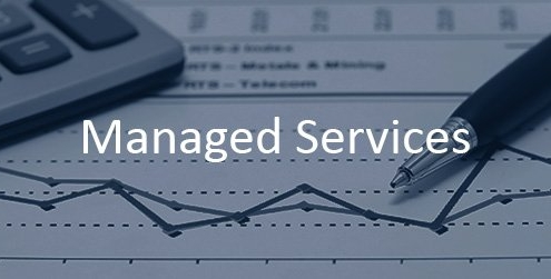 Bristlecone Managed Services