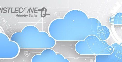 Bristlecone Salesforce integrations