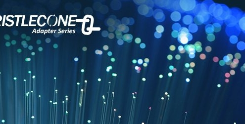 Bristlecone seamless data integration